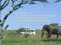 Taman Negra – il luogo perfetto per gli amanti della natura