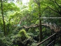 Kauia Fornisce una miriade di Ecoturismo Avventure