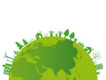 Viaggi verde Nel paese degli orsi