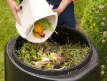 [GUIDA FACILE] Come fare compostaggio domestico