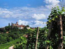 Neive Vino E… | Itinerarinelgusto
