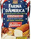 Farina manitoba: Vantaggi e svantaggi della farina Americana