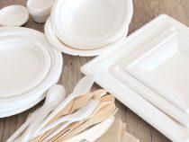 Bicchieri e piatti biodegradabili, un aiuto all'ambiente