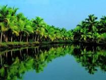 Taman Negra – il luogo ideale per gli amanti della natura