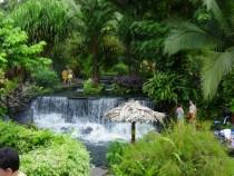 Taman Negra – la vacanza giusta per gli amanti dei personaggi