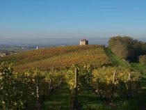 Vino e Storia sulle colline del Sole | Itinerarinelgusto